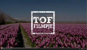 Tulpenfilmpje